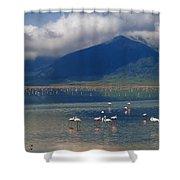 Flamingoes In Crater Lake At Ngorongoro Shower Curtain