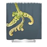 Flashlit Fern Shower Curtain