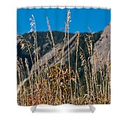 Flatiron Beauty Shower Curtain