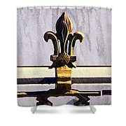 Fleur De Lis Painted Shower Curtain