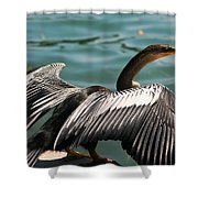 Flight Coordinator  Shower Curtain