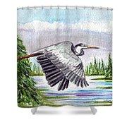 Flight Of Fantasy Shower Curtain