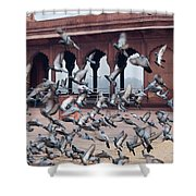 Flight Of Pigeons Inside The Jama Masjid In Delhi Shower Curtain