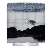 Flight Of The Egret V2 Shower Curtain