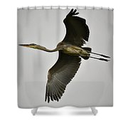 Flight Of The Great Blue Heron Shower Curtain