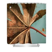 Floating And Drifting Shower Curtain by Laurie Search