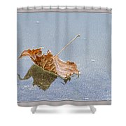 Floating Down Lifes Path Shower Curtain
