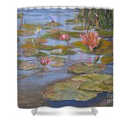 Floating Lillies Shower Curtain by Mohamed Hirji