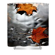 Floating Maple Leaves Shower Curtain