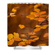 Floating On Orange Fall Leaves Shower Curtain