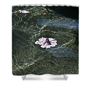 Floating On Reflections Shower Curtain