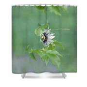 Floating Passion Shower Curtain
