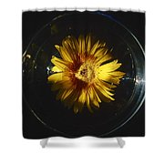 Floatting Flower Shower Curtain