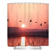Flock Of Canada Geese Flying Shower Curtain