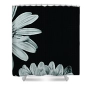 Flora Greetings Shower Curtain