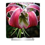 Floral Fist Shower Curtain