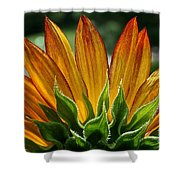 Floral Flaming Fingers Shower Curtain