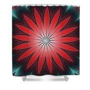 Floral Geometric 102311a Shower Curtain