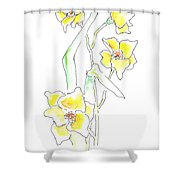 Floral Paintings 2 Shower Curtain
