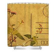 Floral Pattern On Postcard Shower Curtain
