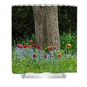 Floral Surrounding Shower Curtain