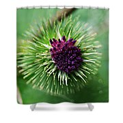 Floral1 Shower Curtain