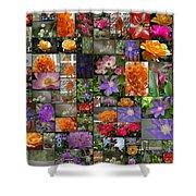 Florals Shower Curtain