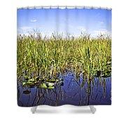 Florida Everglades 5 Shower Curtain
