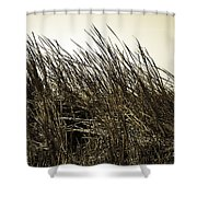 Florida Everglades 6 Shower Curtain