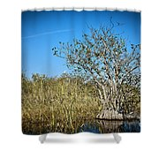 Florida Everglades 8 Shower Curtain