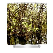 Florida Everglades 9 Shower Curtain