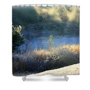Florida Frosty Morning Shower Curtain
