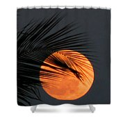Florida Moonrise Shower Curtain