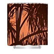 Florida Palm Shadow Shower Curtain