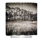 Florida Pine 2 Shower Curtain