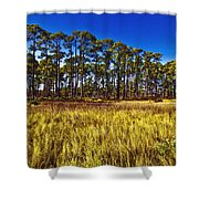Florida Pine 3 Shower Curtain