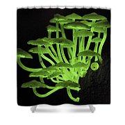 Fluorescent Fungus Shower Curtain