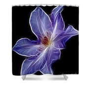 Flower - Clematis - Abstract Shower Curtain
