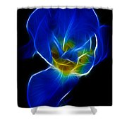 Flower - Coral Blue - Abstract Shower Curtain