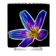 Flower - Electric Blue - Abstract Shower Curtain