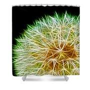 Flower - Forbidden Planet - Abstract Shower Curtain
