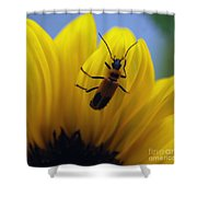 Flower And Bug Shower Curtain