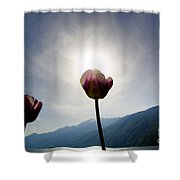 Flower And Sun Shower Curtain