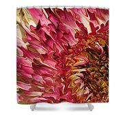 Flower Art Shower Curtain