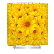 Flower Background Shower Curtain