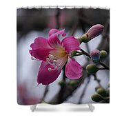 Flower For A Friend Shower Curtain