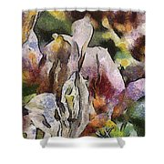 Flower Full Of Color Shower Curtain