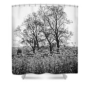 Flower Homage To The Trees Shower Curtain