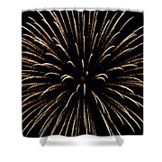 Flower In The Sky2 Shower Curtain by Sandi OReilly