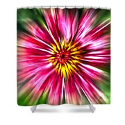 Flower Pin Wheel Shower Curtain